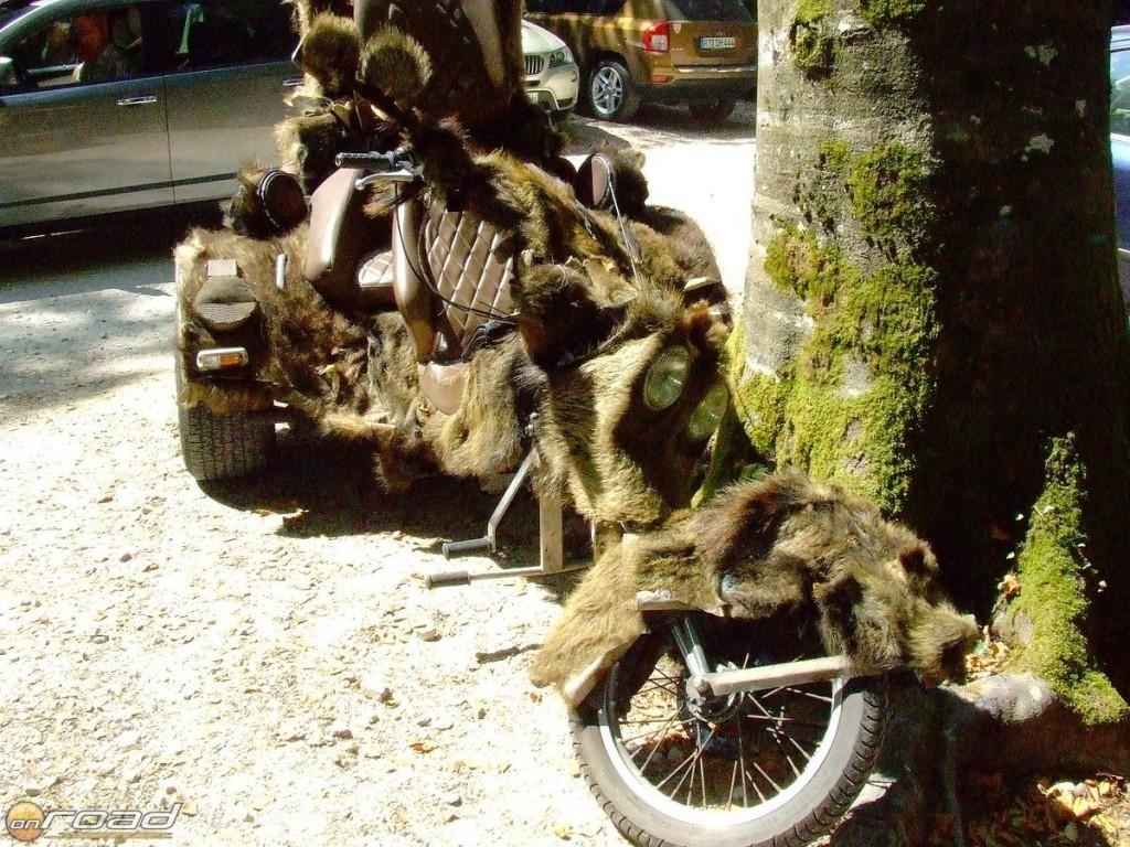 Vaddisznó-trike a Plitvicei Nemzeti Parkban - a gazdájára lettem volna még kíváncsi