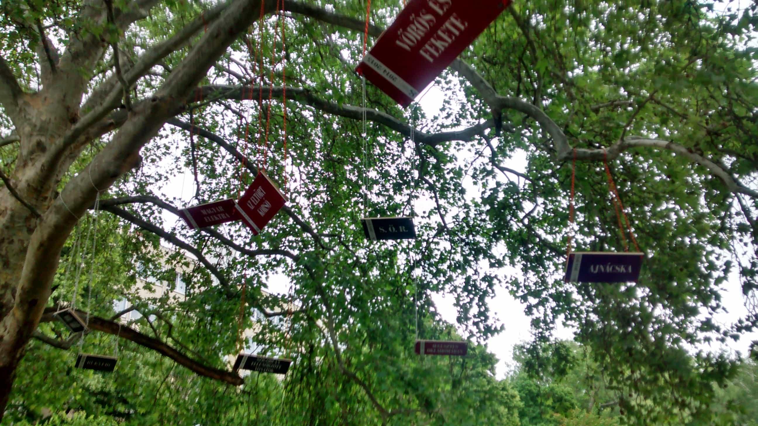 Ott a fán a SÖR feliratú hinta!