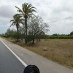 Marokkó túra onroad 13 Valahol Andalúziában