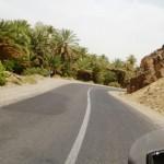 Marokkó túra onroad 102 Oázisok mellett a Draa mentén