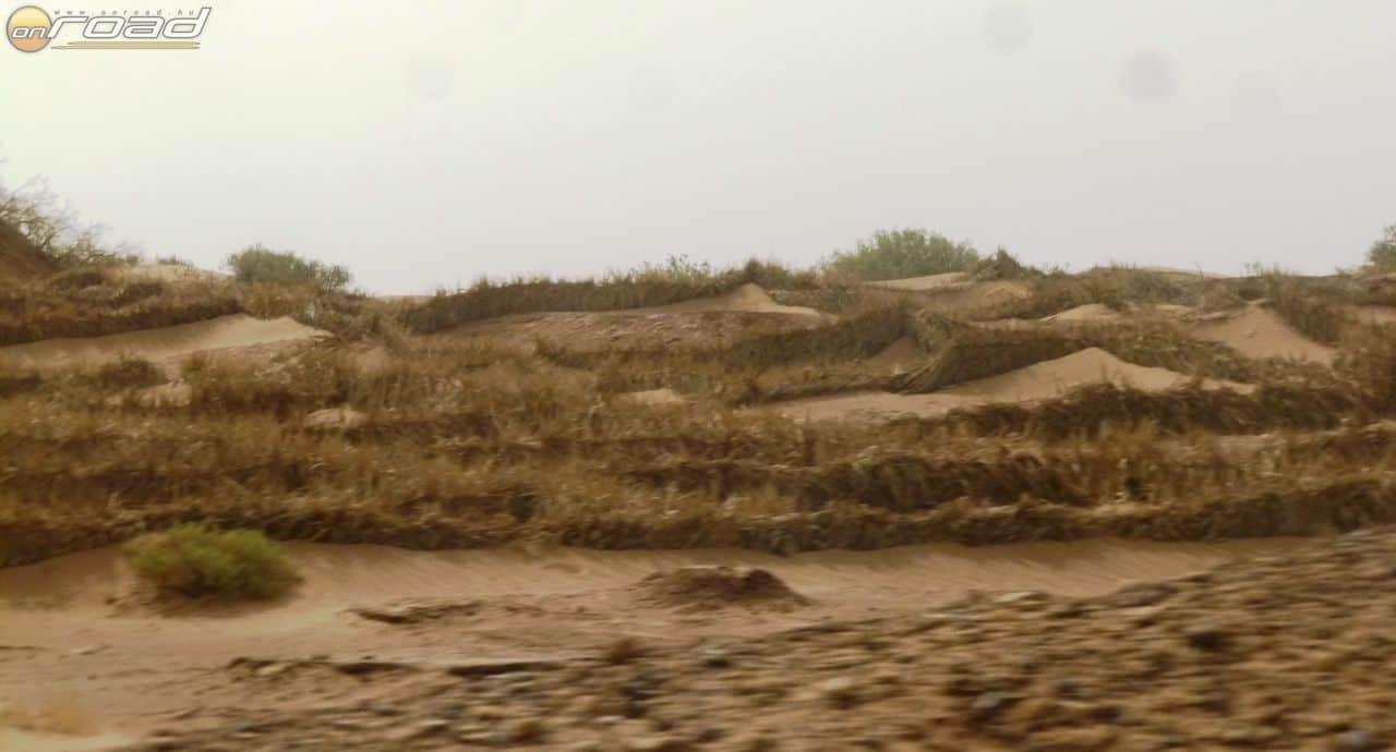 Pálmalevél kerítésekkel késleltetik a homok térnyerését. Vesztésre állnak...