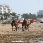 Marokkó túra onroad 126 Bértevék, Asilah