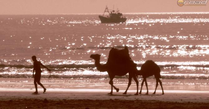 Hajók: fent a vízi, alább a sivatagi