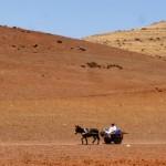 Marokkó túra onroad 146 Olyan igazán Marokkós életkép