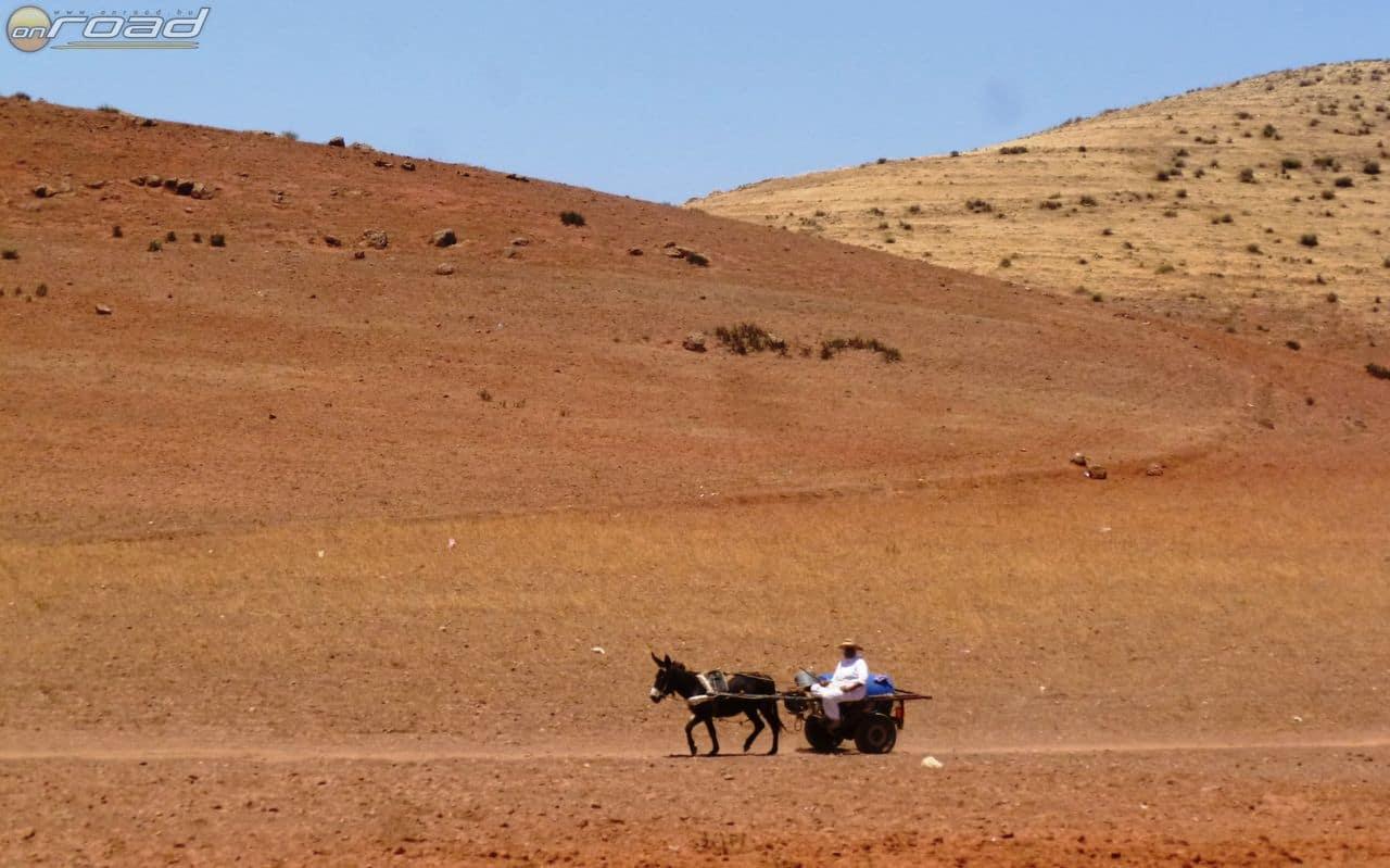 Igazi marokkós életkép...