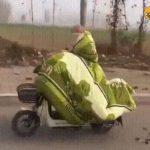 Motoros-Onroad-1