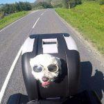 Motoros-kutya-Onroad-1