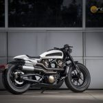 Custom-Harley-Davidson-Onroad-2