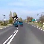 suzukis-baleset-onroad